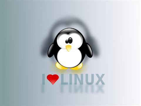 love linux Custom